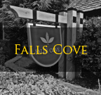 Falls Cove Troutman NC Homes For Sale
