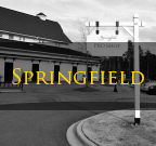 Springfield Fort Mill SC Homes