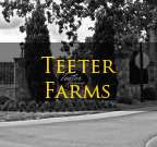 Teeter Farms Mooresville NC Homes for Sale